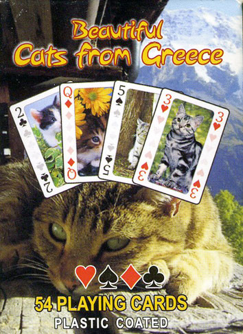 Beautiful Cats from Greece